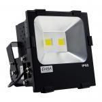 Professional 100W 4500K LED Flood Light