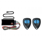 Remote Keyless Entry & Basic Immobiliser System